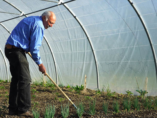 Photography of gardener who hoe shallots
